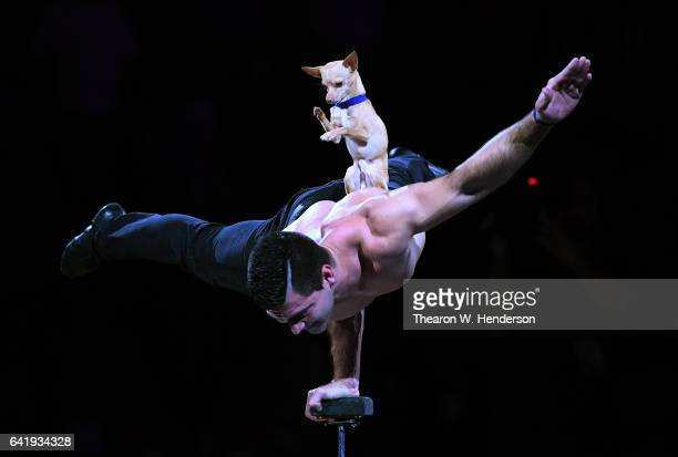 Christian Stoinev and Scooby prerforms during halftime of an NBA basketball game between the Chicago Bulls and Golden State Warriors at ORACLE Arena...