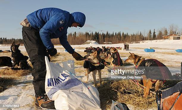 Christian Turner snacks his dogs at the Nikolai checkpoint during the 2014 Iditarod Trail Sled Dog Race on Wednesday March 5 in Alaska