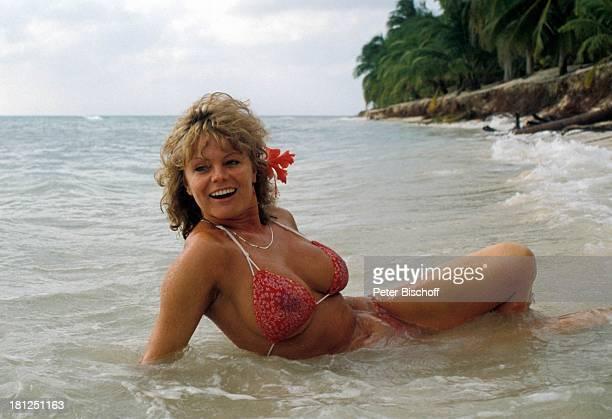 Christiane Rücker neben den Dreharbeiten zur ZDFReihe 'Traumschiff' Folge 5 'Karibik/Bahamas' Karibik Strand Meer Bikini sexy Blume Orchidee...