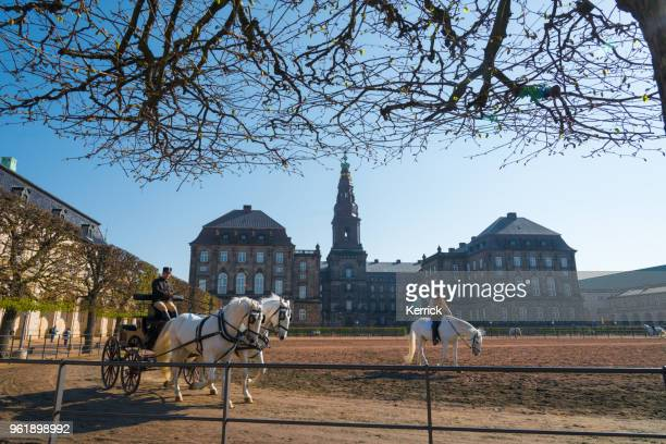 christiansborg palace, copenhagen, denmark - morning work of the royal horses - christiansborg palace stock pictures, royalty-free photos & images
