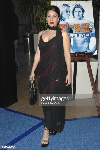 """Christina DeRosa attends """"Into The Blue 2: The Reef"""" Premiere Party at The Beverly Hilton on April 14, 2009 in Beverly Hills, CA."""