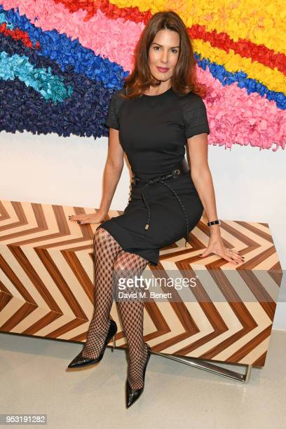 Christina Estrada attends a private view of On Top Of The World an exhibition hosted by David Linley created with internationally renowned artists...