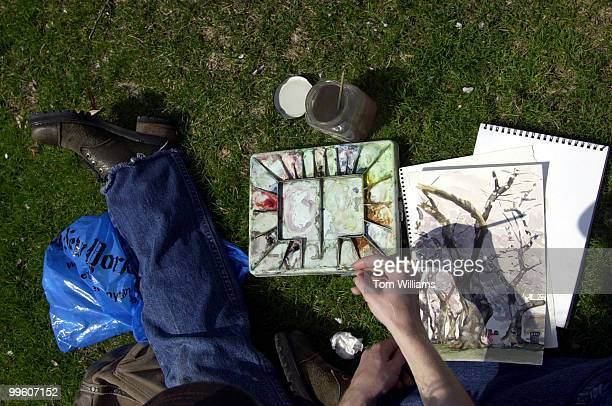 Christina Millan of Capitol Hill paints a watercolor of cherry trees nea Louisiana and D streets NW