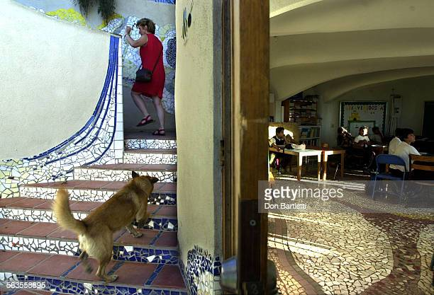 Christine Brady, director and founder of Colegio La Esperanza in Tijuana climbs a courtyard stairway at the hilltop school. The buildings are...