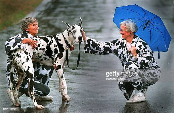 Christine Darcy left and her sister Cynthia Hickson right fuss over Big Jay a Harlequin Great Dane during the MSPCA's Mutts 'n' Fluff 'n' Stuff Day...