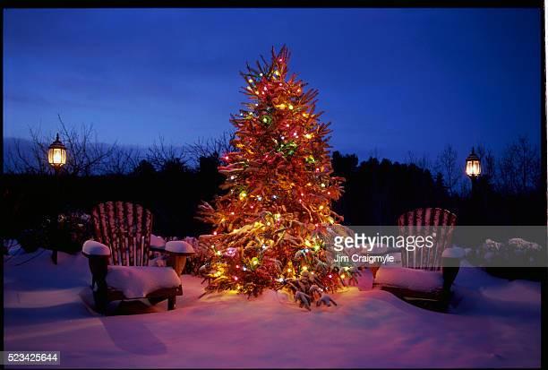 Christman Tree and Adirondack Chairs