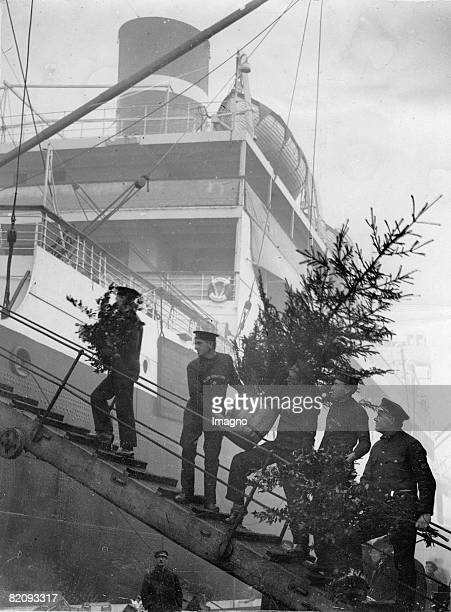 Christmas at sea, Crew-Members of the Blue Star Liner Avila are taking a Christmas tree and holly aboard, to prepare their ship for the christmas...