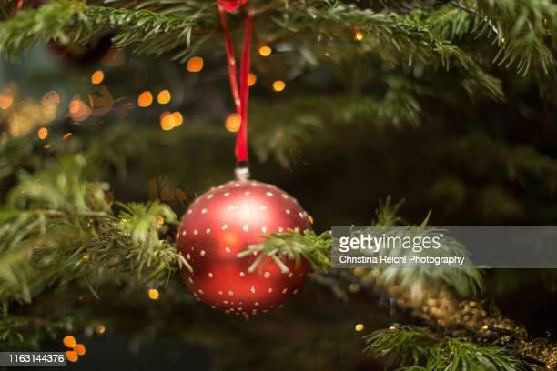 christmas ball hanging on christmas tree - dezember stock-fotos und bilder