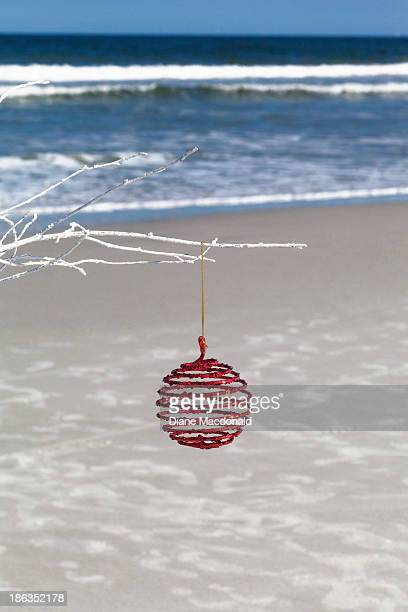 Christmas bauble on a white branch at the beach