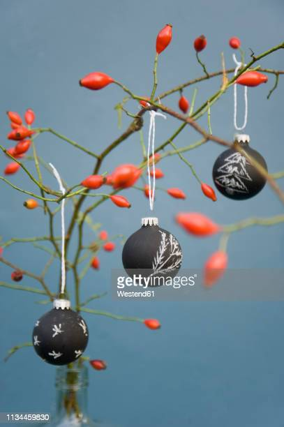 christmas baubles, blackboard paint painted with chalk, rosehip twig - twig stock pictures, royalty-free photos & images
