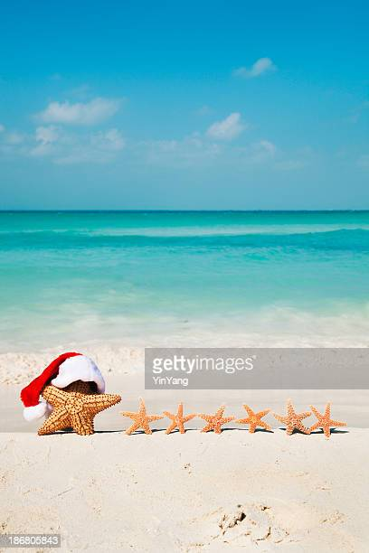 christmas beach santa claus, starfish family tropical holiday vacation - caribbean christmas stock pictures, royalty-free photos & images