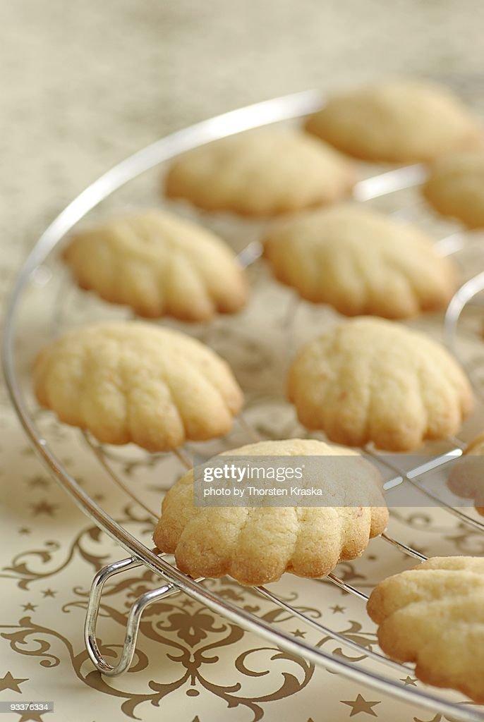 Christmas Cookies : Stock Photo