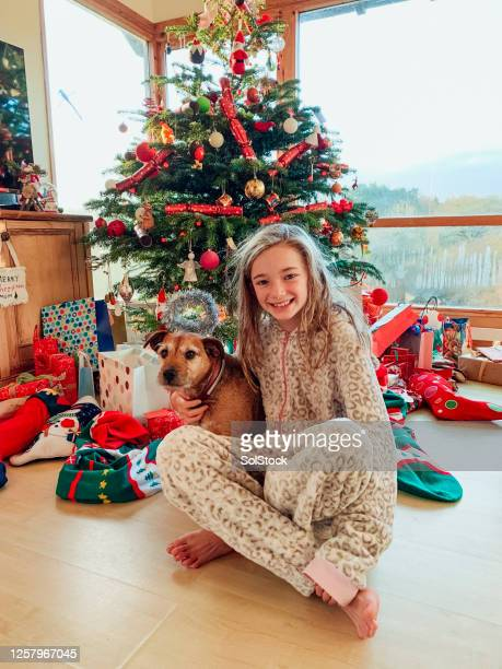 christmas cuddles - stockings photos stock pictures, royalty-free photos & images
