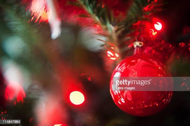 Christmas decoration hanging on Christmas tree, studio shot