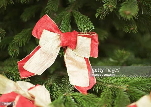 Christmas decoration on tree, close-up