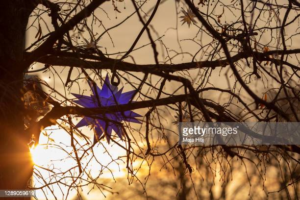 Christmas decoration stands on the tree during sunset on December 02, 2020 in Berlin, Germany. The Christmas season is beginning muted in Berlin,...