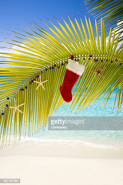 Christmas decorations at a tropical beach
