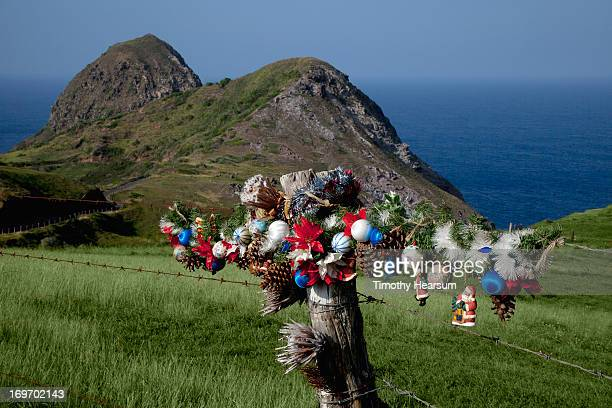 christmas decorations on fence with ocean beyond - hawaii christmas stock pictures, royalty-free photos & images
