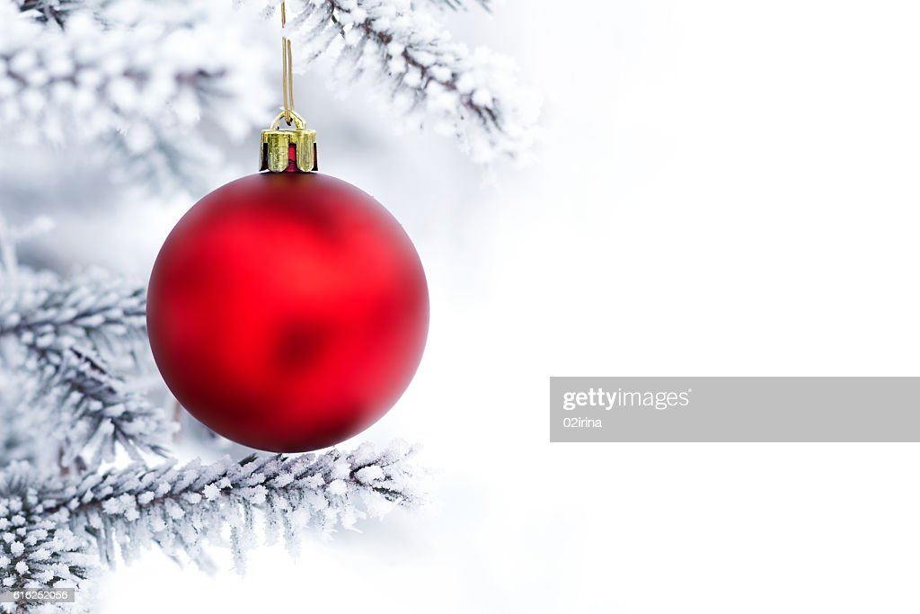 Christmas decorations on the pine branch : Stock Photo