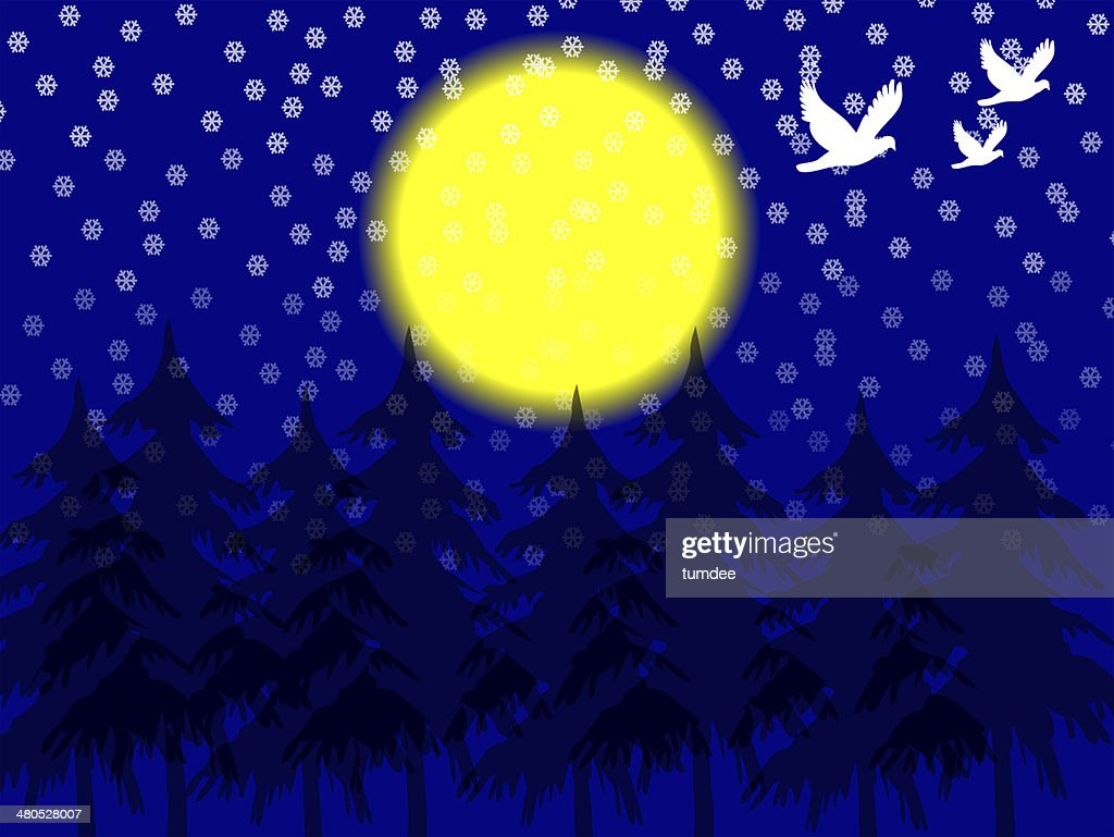Christmas  elements illustrations : Stock Photo