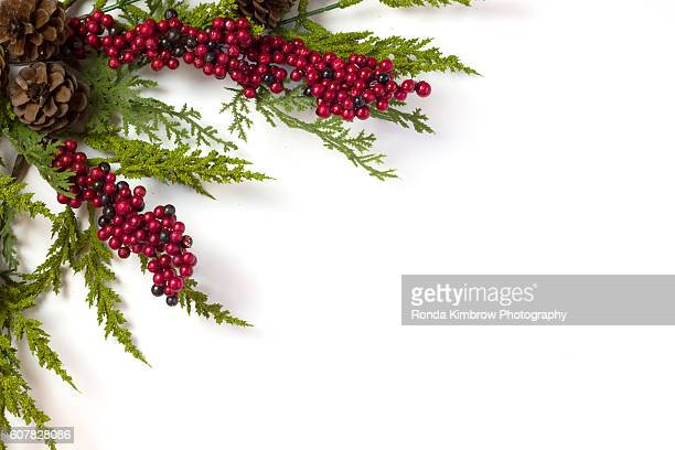 Christmas Garland with Pine Cones and Berries isolated on white background