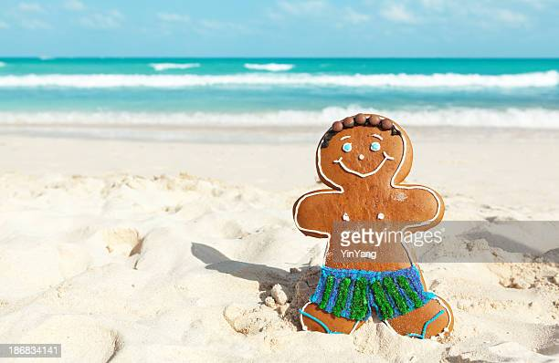 christmas ginger bread man winter vacation on caribbean beach - caribbean christmas stock pictures, royalty-free photos & images
