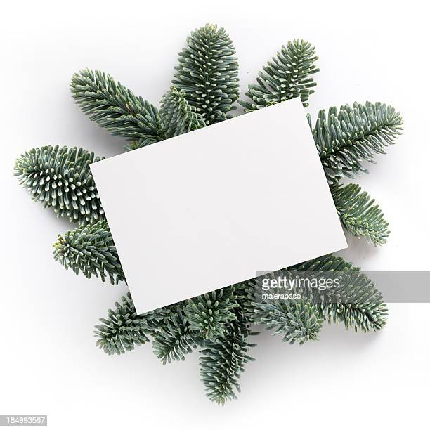 christmas greetings - holiday card stock photos and pictures