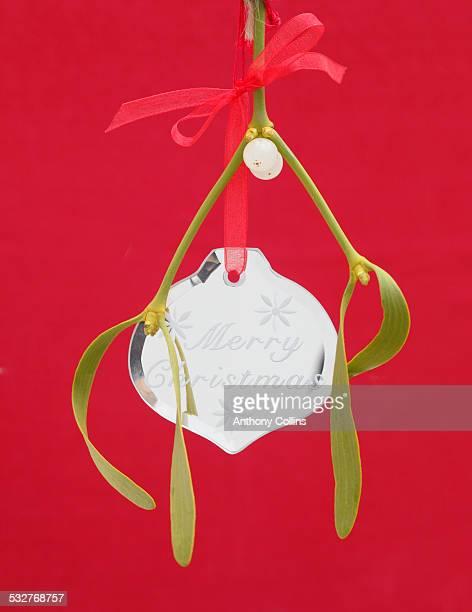 Christmas holiday mistletoe