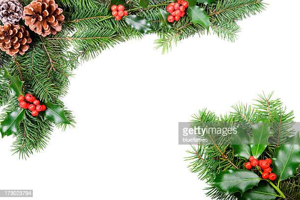 A Christmas holly and pine cones border
