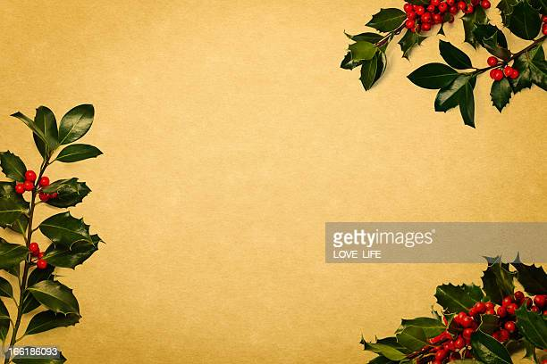 christmas holly background - christmas holly stock photos and pictures