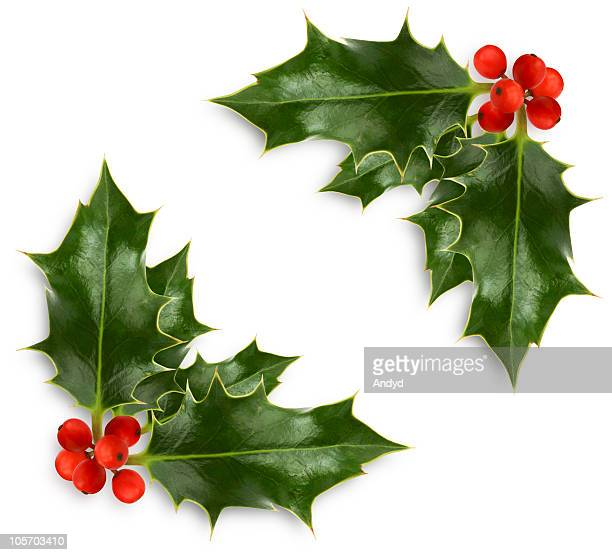 christmas holly corner - holly stock pictures, royalty-free photos & images