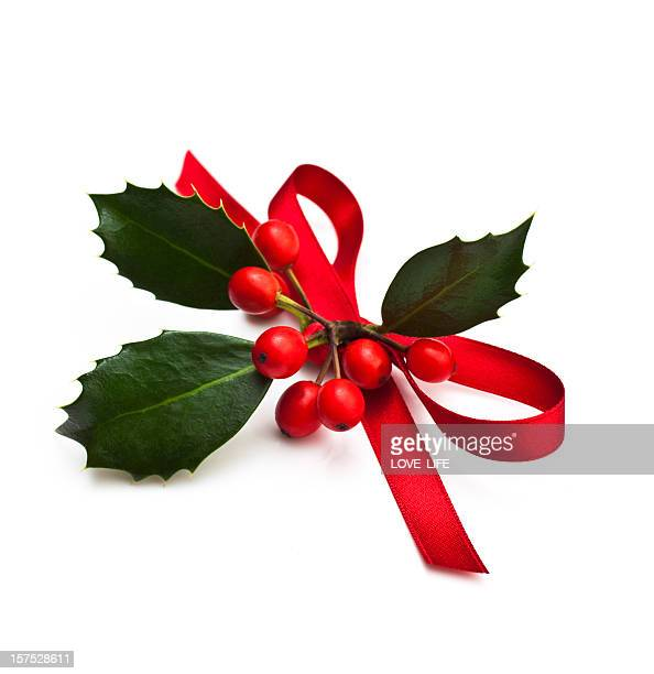 christmas holly - holly stock pictures, royalty-free photos & images