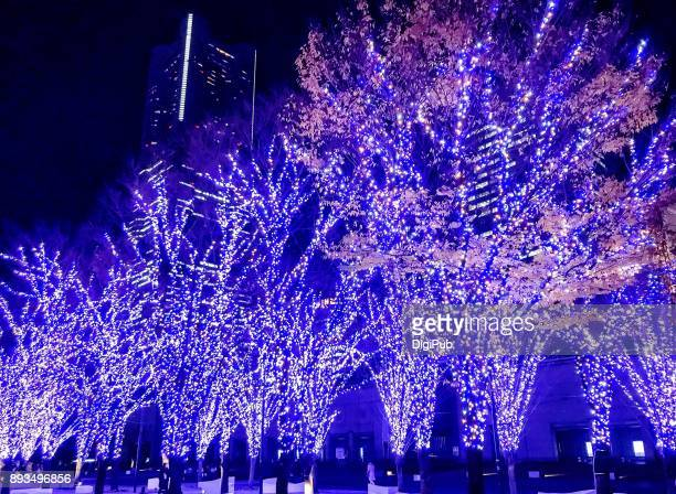 christmas illuminations in yokohama minatomirai - イルミネーション ストックフォトと画像