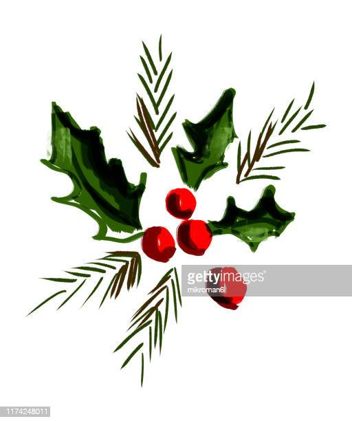 christmas illustration of ivy and holly- christmas card - holly stock pictures, royalty-free photos & images
