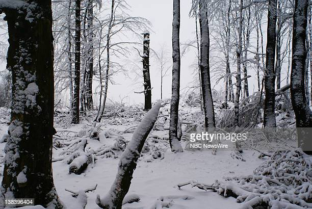 NBC NEWS Christmas in Germany Pictured Winter wonderland from Thuringia Forest in Germany on December 17 2007
