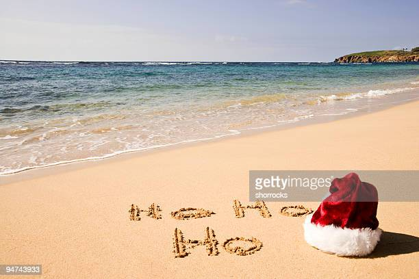 christmas in hawaii - hawaii christmas stock pictures, royalty-free photos & images