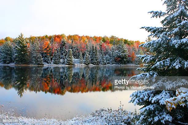 christmas in october - wisconsin stock pictures, royalty-free photos & images