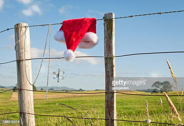 christmas in rural new zealand - country christmas stock pictures, royalty-free photos & images