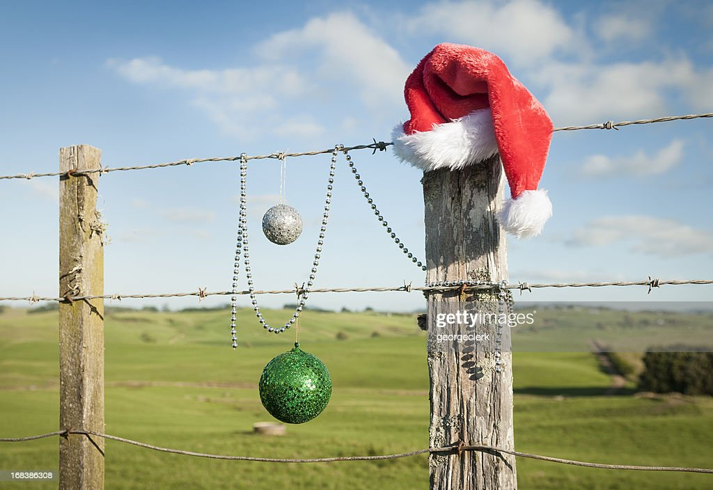 Christmas in Summer : Stock Photo