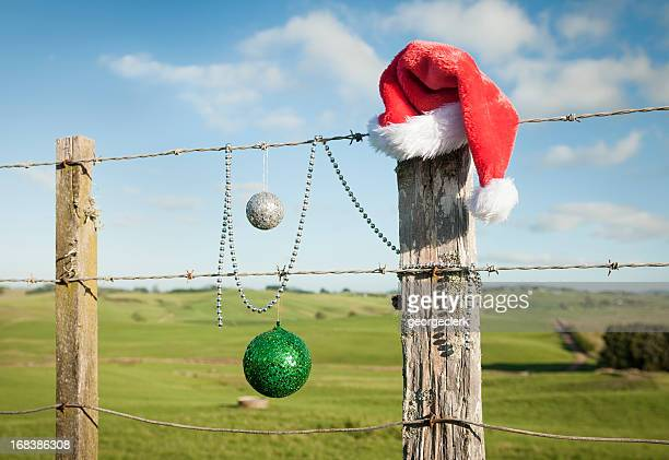 christmas in summer - country christmas stock pictures, royalty-free photos & images