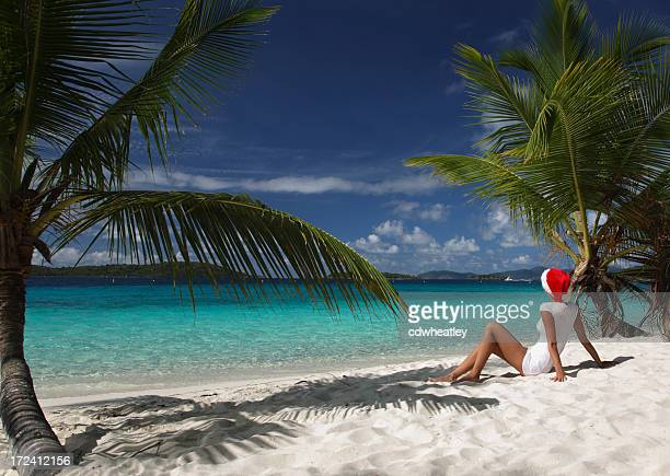 christmas in the caribbean - caribbean christmas stock pictures, royalty-free photos & images