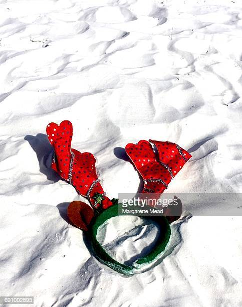 christmas in warm climates - siesta key stock photos and pictures