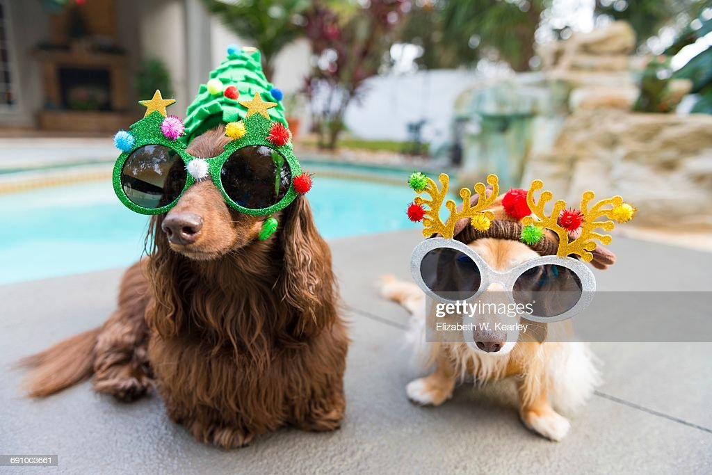Christmas In Warm Climates : Stock Photo