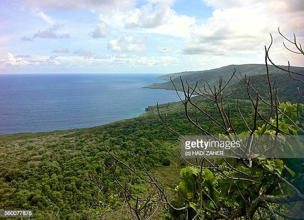 christmas island shoreline | australia - christmas island stock pictures, royalty-free photos & images
