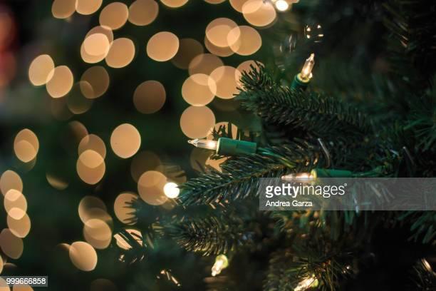 Christmas light bulb on tree with bokeh