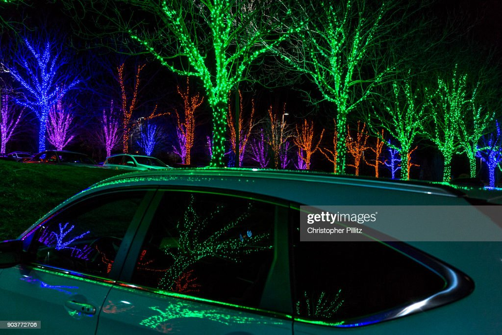 Christmas Light Decorations In Park, Asheville, NC. : Stock Photo