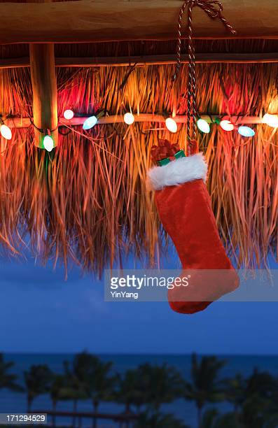 christmas light in palapa of tropical resort hotel vt - caribbean christmas stock pictures, royalty-free photos & images