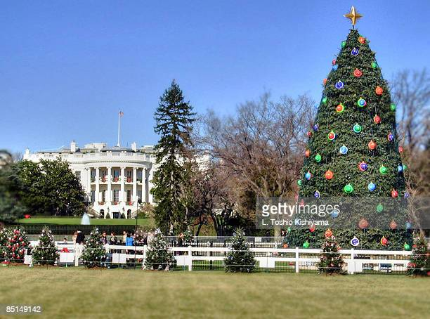 christmas lights at the white house - casa branca washington dc - fotografias e filmes do acervo
