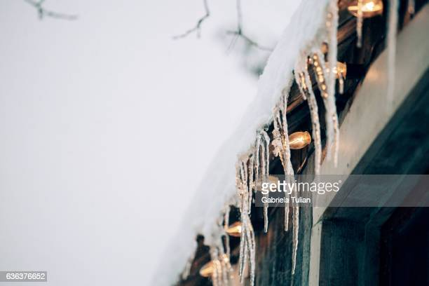 Christmas lights in a cold day
