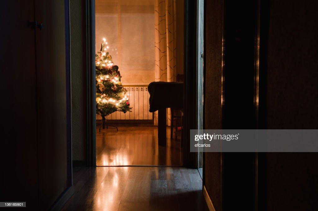 Christmas lights. Night indoor scene : Stock Photo